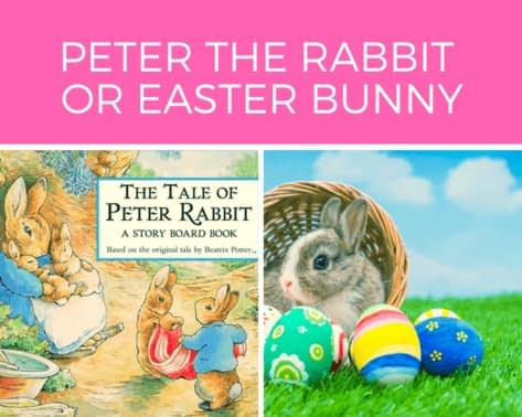 PETER-THE-RABBIT-OR-EASTER-BUNNY